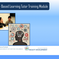 Case-Based Learning TLEF Grant